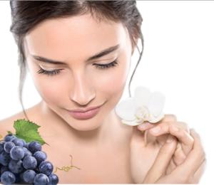 Co to jest LabOne AntioxidantMax? Stostowanie i skład