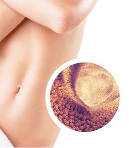 Czy LabOne Probiotic można kupić w aptece?