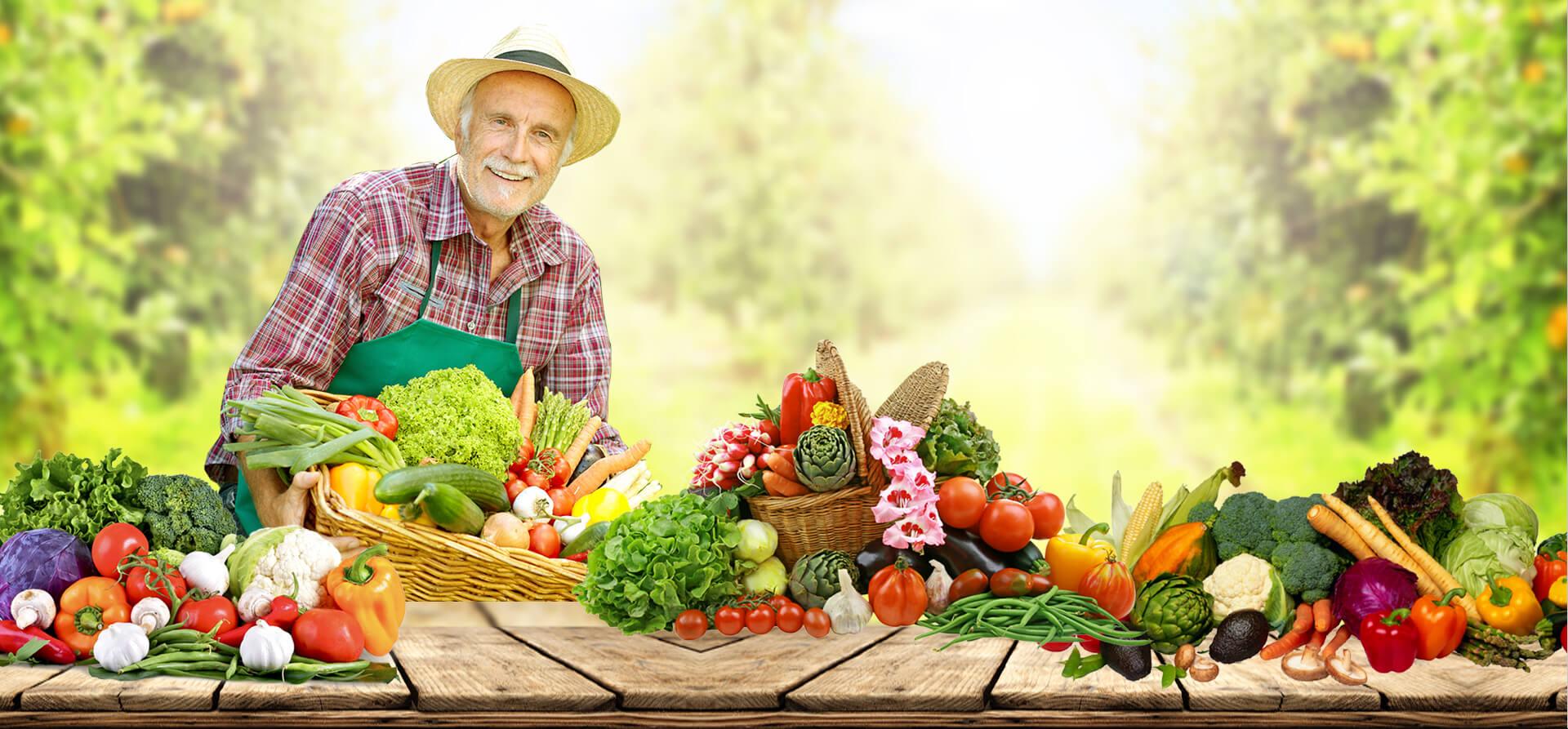 Co to jest Agromax? Stosowanie i skład