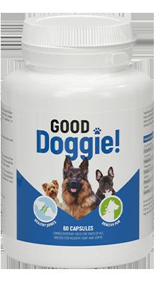 Good Doggie - użytkowników opinie forum