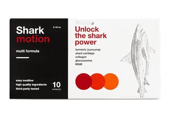 Shark Motion - 2021 - gdzie kupić skład, ceny